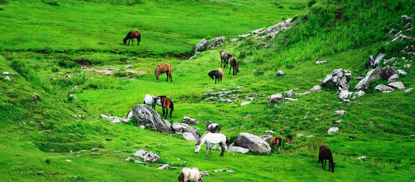 Image result for सुदूरपश्चिम प्रदेशमा